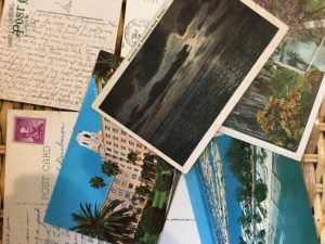 A collection of Florida postcards