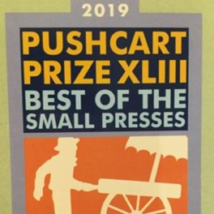 2019 Pushcart Prize Collection