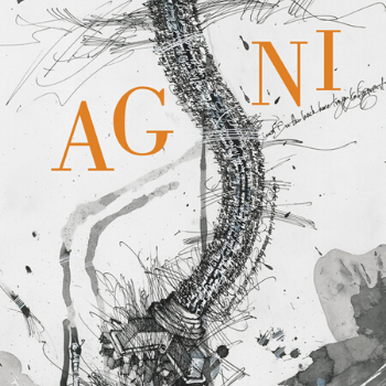 On the cover of Agni's Issue 91 is a black swirling tower. The title Agni is in orange.