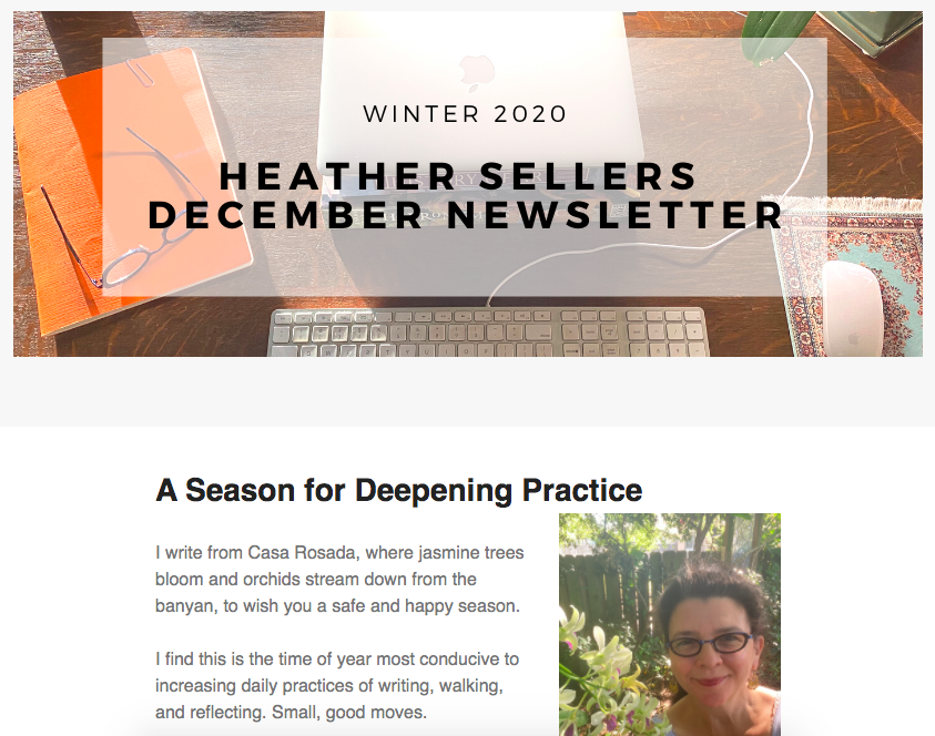 Image of the December newsletter